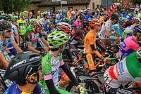 Foto Giro Italia 2013 - Roncole Verdi Giro_Italia_2013_093