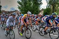 Foto Giro Italia 2013 - Roncole Verdi Giro_Italia_2013_102