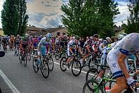 Foto Giro Italia 2013 - Roncole Verdi Giro_Italia_2013_104