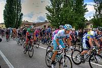 Foto Giro Italia 2013 - Roncole Verdi Giro_Italia_2013_105
