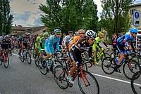 Foto Giro Italia 2013 - Roncole Verdi Giro_Italia_2013_110