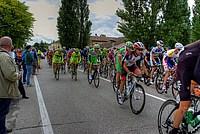 Foto Giro Italia 2013 - Roncole Verdi Giro_Italia_2013_117