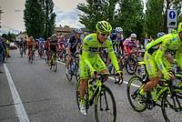 Foto Giro Italia 2013 - Roncole Verdi Giro_Italia_2013_120