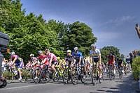 Foto Giro Italia 2014 - Collecchio Giro_Italia_2014_Collecchio_305