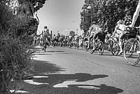Foto Giro Italia 2014 - Collecchio Giro_Italia_2014_Collecchio_330