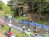 Foto Giro Italia 2014 - Giulia e Gregorio Giro_2014_Gregorio_Rossi_53
