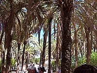 Foto Gita Spagna-Portogallo Spagna_Portogallo_059