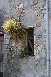 Foto Grigliate Estive 2007 Frassineto_e_Caneto_018