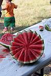 Foto Grigliate Estive 2007 Frassineto_e_Caneto_131