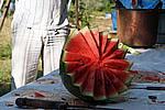 Foto Grigliate Estive 2007 Frassineto_e_Caneto_138