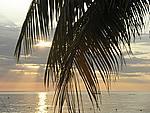 Foto Jamaica Jamaica_019