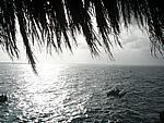 Foto Jamaica Jamaica_073