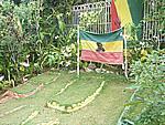 Foto Jamaica Jamaica_087