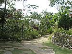 Foto Jamaica Jamaica_088