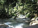 Foto Jamaica Jamaica_105