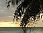 Foto Jamaica Jamaica_160