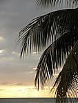 Foto Jamaica Jamaica_161