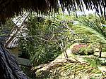 Foto Kenia 2004 Kenia 2004 081