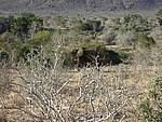 Foto Kenia 2004 Kenia 2004 215