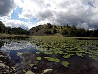 Foto Lago Bino 2015 Lago_Bino_236