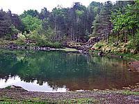 Foto Lago delle Lame Lame_021