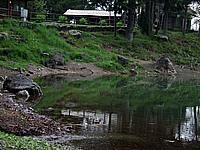 Foto Lago delle Lame Lame_025
