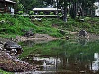 Foto Lago delle Lame Lame_026