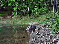 Foto Lago delle Lame Lame_029