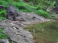 Foto Lago delle Lame Lame_035