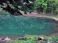 Foto Lago delle Lame Lame_043