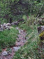 Foto Lago delle Lame Lame_047