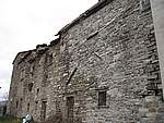 Foto Le radici del nostro passato Costaerbosa - Casa Torre 3