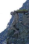 Foto Levanto e Monterosso da_Levanto_a_Monterosso_082