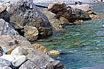 Foto Levanto e Monterosso da_Levanto_a_Monterosso_113