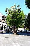 Foto Levanto e Monterosso da_Levanto_a_Monterosso_119