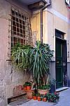 Foto Levanto e Monterosso da_Levanto_a_Monterosso_122
