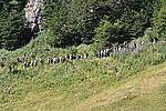 Foto Madonna del Monte Penna 2007 Madonna del Penna 2007 037