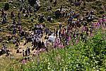 Foto Madonna del Monte Penna 2007 Madonna del Penna 2007 070