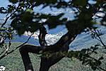 Foto Madonna del Monte Penna 2007 Madonna del Penna 2007 092