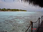 Foto Maldive Maldive_019