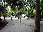 Foto Maldive Maldive_040