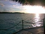 Foto Maldive Maldive_093