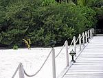 Foto Maldive Maldive_163
