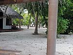 Foto Maldive Maldive_183