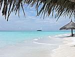 Foto Maldive Maldive_186