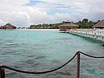 Foto Maldive Maldive_267