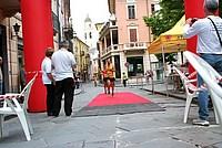 Foto Maratonina Alta Valtaro 2013 Maratonina_Taro_2013_515