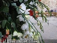 Foto Matrimonio Costa Sidoli costa_sidoli_019