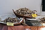 Foto Mercatino del Fungo - Borgotaro 2007 Mercato_Fungo_2007_028