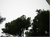 Foto Misano 2005 misano_2005_106
